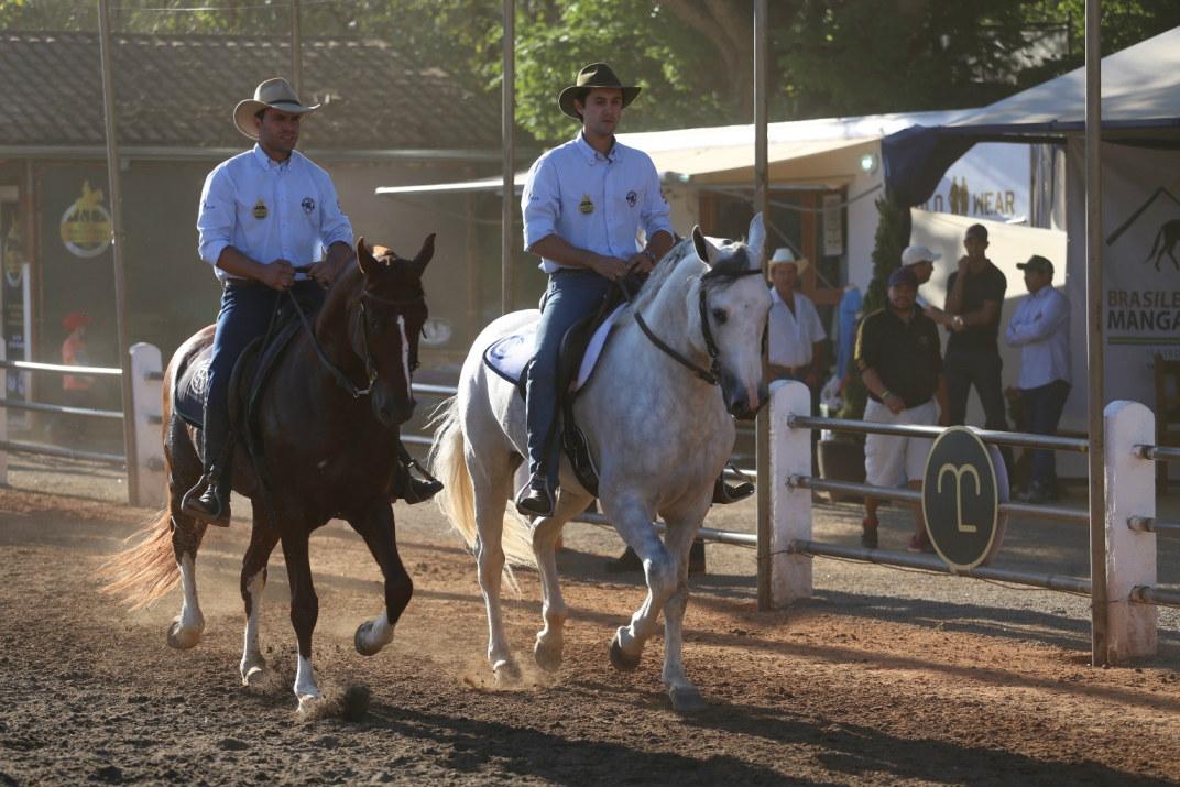 Expo Nacional do Cavalo Mangalarga semana que vem
