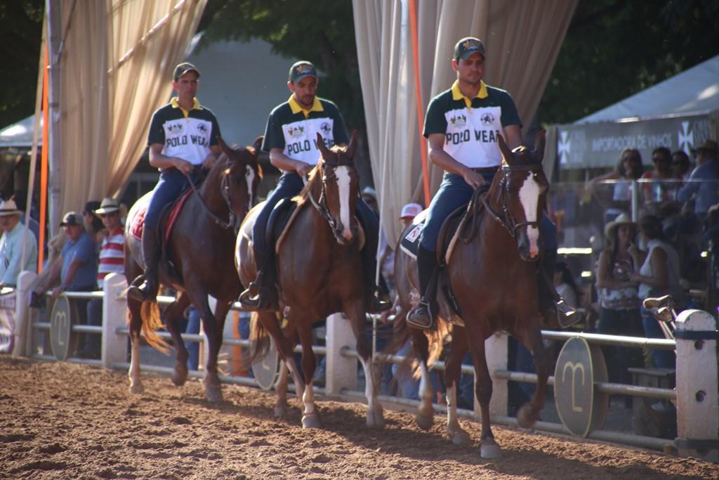 39ª Nacional Mangalarga elege os Grandes Campeões de 2017
