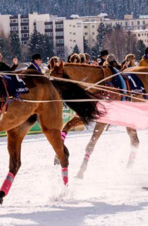 Skijoring! Já ouviu falar desse esporte a cavalo?