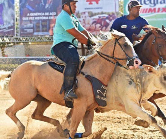 Recorde de cavalos e vaqueiros em evento da ABQM no Nordeste