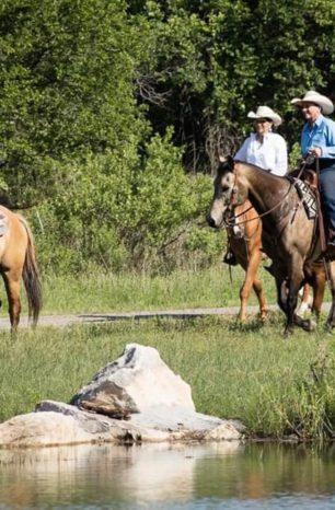 Regras para andar a cavalo na estrada