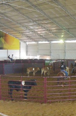 Domingo de Cinco Tambores, Seis Balizas e Ranch Sorting no Nacional QM