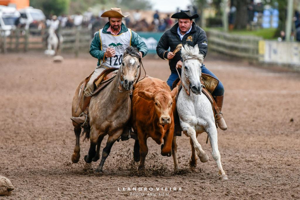 seletiva do cavalo Crioulo