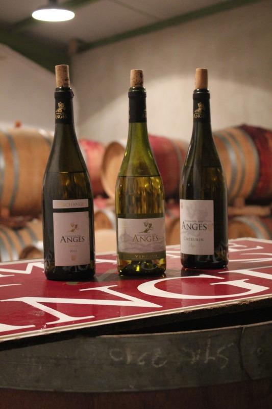 Rota do Vinho na Provença