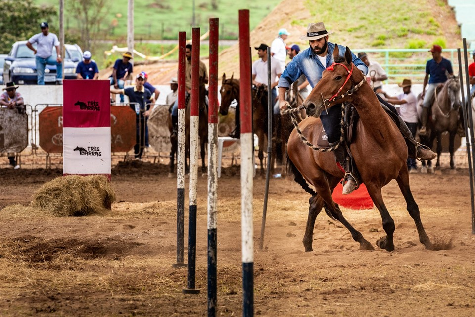 Habilidades do cavalo Campolina foram testadas em pista - Imagem: César
