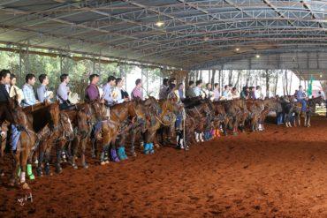 Prorelax Calf Roping comemora crescimento de seu evento