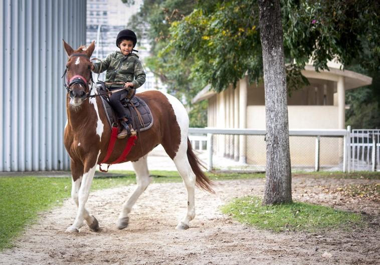 Equitação lúdica é recomendada para crianças de 2 a 8 anos