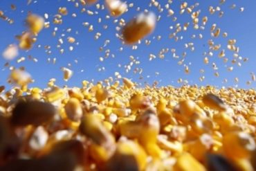Exportações do agro atingem US$ 8,4 bilhões em outubro