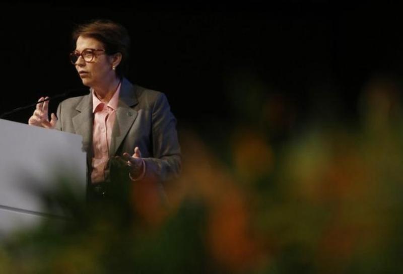 Ministra mostra nos Estados Unidos avanços da agropecuária brasileira