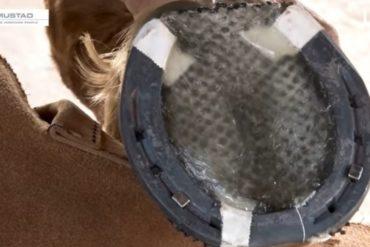 Como aplicar silicone no casco