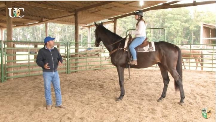 Devo treinar mais o lado ruim do meu cavalo