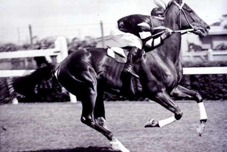 Phar Lap consagrado gênio das pistas de corrida nos anos 30