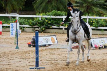 Temporada da Equitação de Trabalho encerrada com honras