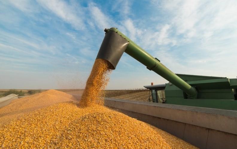Valor da Produção Agropecuária para 2020 é estimado em R$ 674,10 bilhões