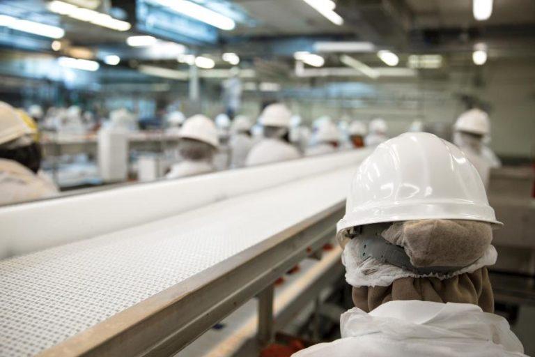 SIF garante a manutenção do abastecimento de produtos de origem animal Atividades de inspeção e fiscalização continuam sendo totalmente cobertas para manutenção do abastecimento público