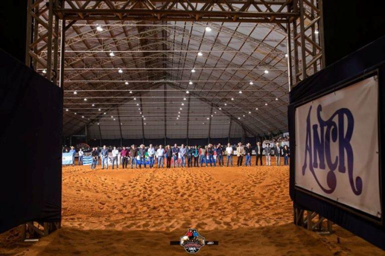 ANCR altera data do Potro do Futuro 2020 Programação do maior evento de Rédeas do ano ainda conta com o Campeonato Nacional e o 4° NRHA/ANCR Internacional Cup