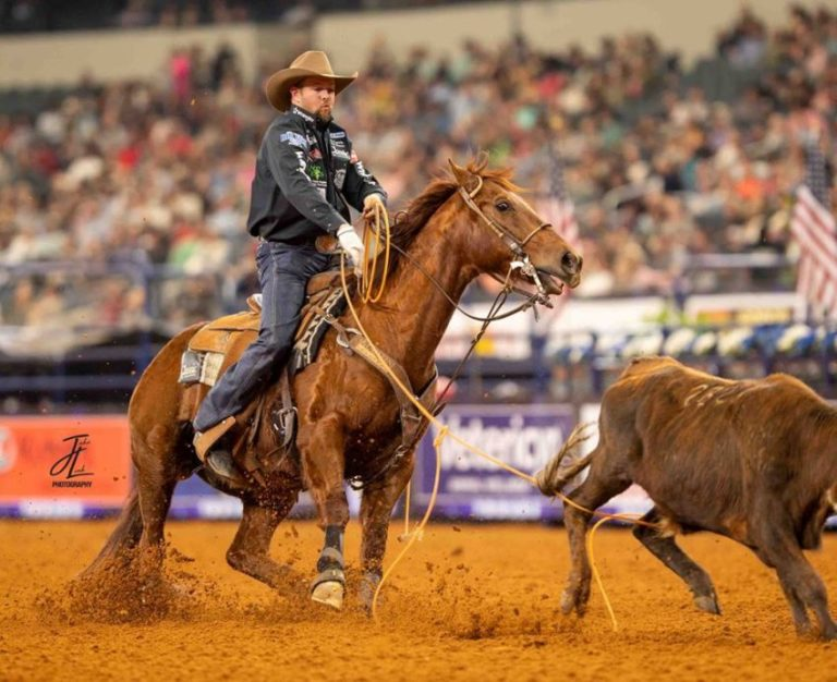 Main Street Boon muda missão original ao se tornar campeão no Laço Campeão mundial AQHA de Team Roping e do The American nasceu para ser um cavalo de Apartação