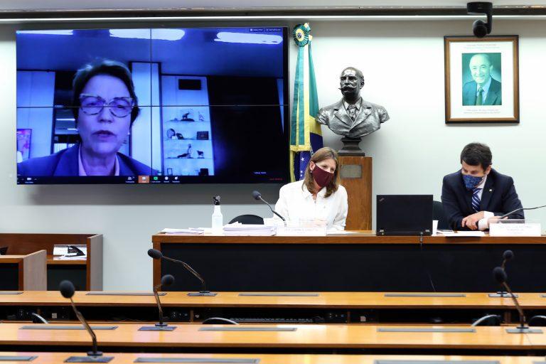 Ministra da Agricultura anuncia protocolo unificado para frigoríficos diante da pandemia Documento do governo prevê cerca de 70 recomendações mínimas que deverão ser implantadas pelo setor empresarial