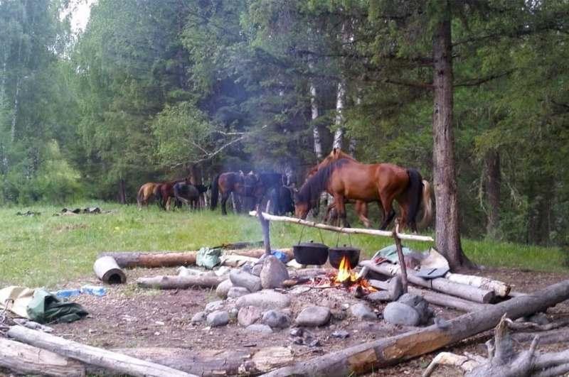 Cavalgada na Sibéria Paulo Junqueira conta na sua coluna da semana a respeito de uma cavalgada muito peculiar
