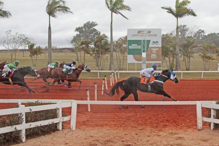 Com portões fechados, Jockey de Sorocaba reabre para corridas Entre as medidas, obrigatoriedade do uso de máscara de proteção facial