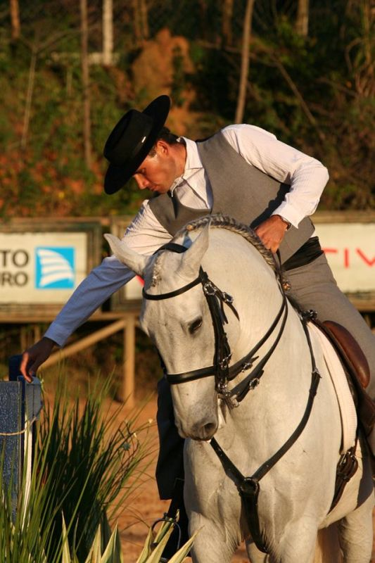 Conheça a Associação Brasileira de Equitação de Trabalho Modalidade tem como finalidade demonstrar o trabalho diário de campo