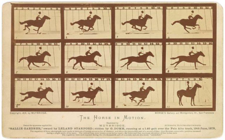 O galope pelas fotografias de Eadweard Muybridge