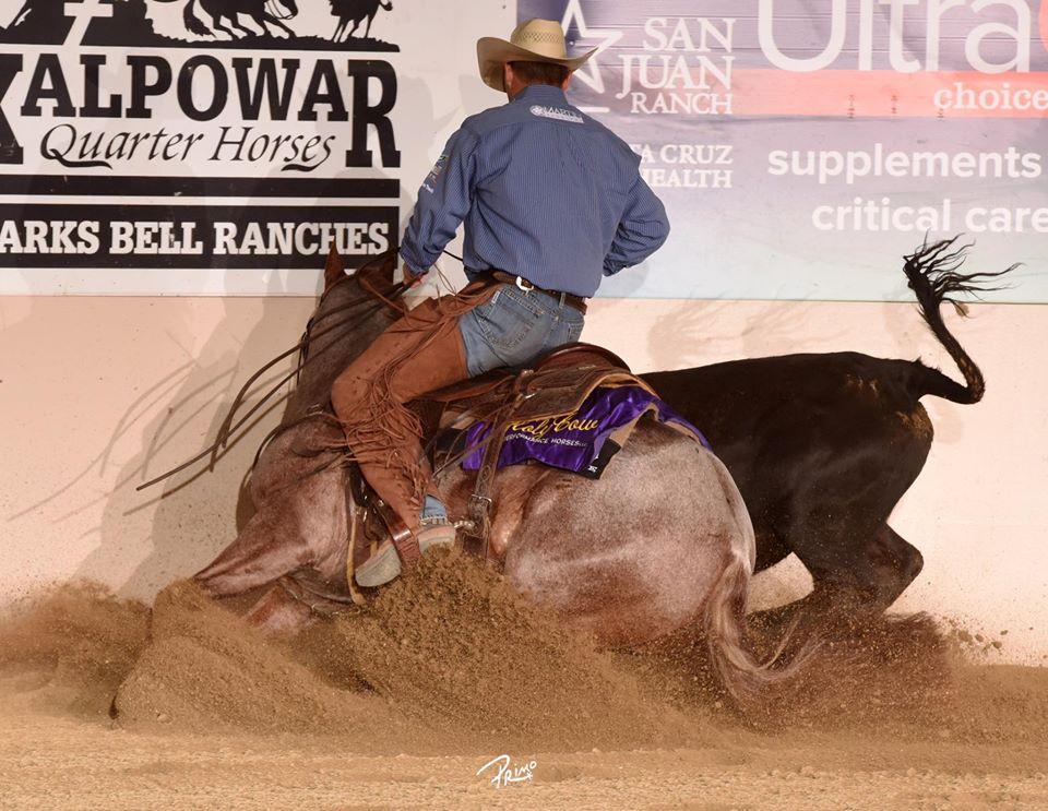 O talento de Todd Bergen evidencia seu sucesso O treinador e apresentador de cavalos de Rédeas é NRHA Two Million Dollar Rider e tem conquistas ainda em outras modalidades