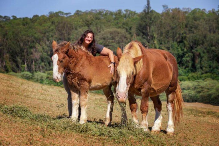 Susana Reinhardt fala da importância do cavalo em sua vida Zootecnista , Superintendente da ABCCBretão, Técnica de registro e juíza das raças Bretão e Percheron