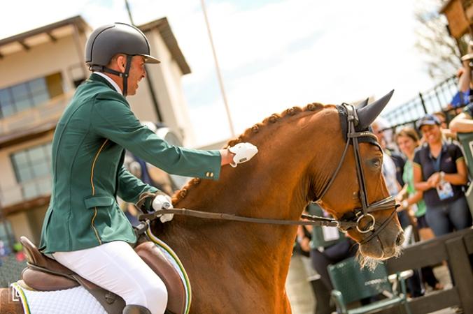 """""""Todos nós temos mais força que pensamos"""", acredita Rodolpho Riskalla O brasileiro Rodolpho Riskalla é dono de duas medalhas de prata no Adestramento Paraequestre nos Jogos Equestres Mundiais 2018"""
