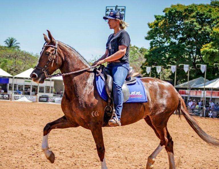 Dalva Marques conta que os cavalos são motivo de muita alegria e gratidão Cristã, criadora, treinadora e apresentadora do CT Rancho Bigorna, jurada de equinos e muares de Marcha