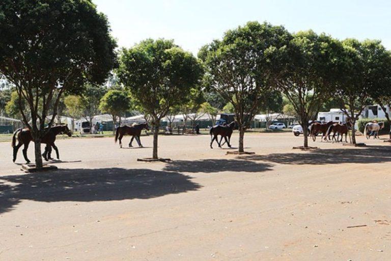 Desafios do Rancho Mariana ao realizar prova em meio à pandemia O Rancho Mariana AO VIVO mostrou, sobretudo, um esforço conjunto para o retorno dos eventos equestres