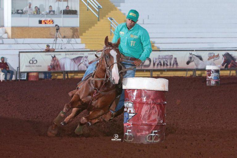 Sheik Jean Fly HTT faz história ao ser exportado aos Estados Unidos Garanhão é de criação brasileira e esse feito representa um marco para a história do esporte equestre brasileiro