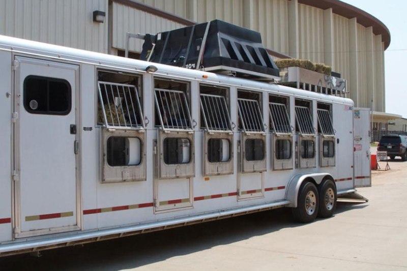Medidas de biossegurança e vacinas podem ajudar a limitar os riscos de algumas doenças nos cavalos quando você sai em viagem!