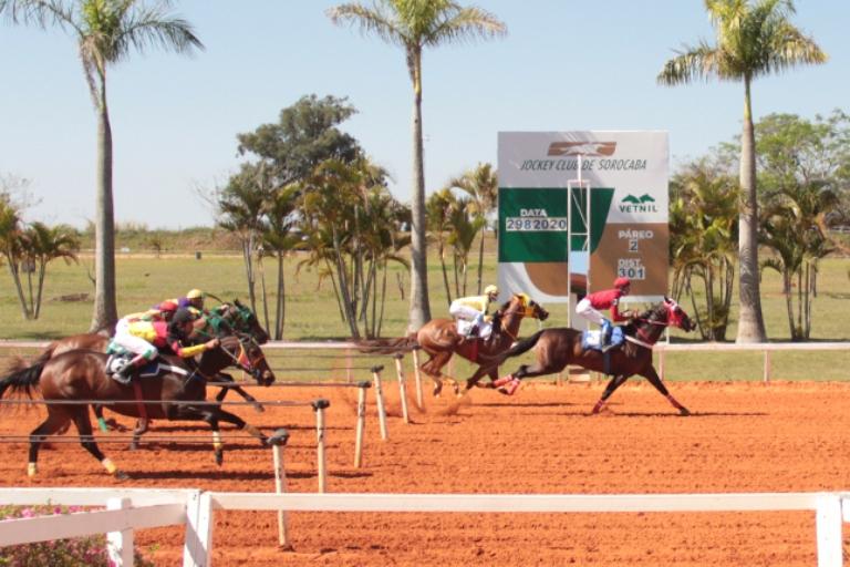 Noticia Lake HWS bate recorde dos 365 metros em Sorocaba. A égua de quatro anos com seu tempo carimbou vitória no GP II Derby