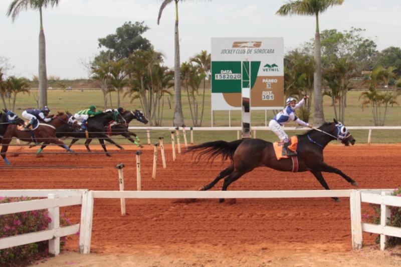 Final de semana foi agitado no Jockey Club de Sorocaba com as finais dos GPs ABQM Potro do Futuo, Rei e Rainha da Velocidade