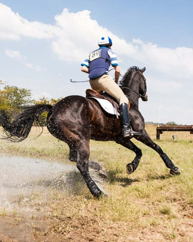 Há no mercado soluções doping free, que contribuem para o bom desempenho dos equinos e não infringem a legislação; atenção redobrada