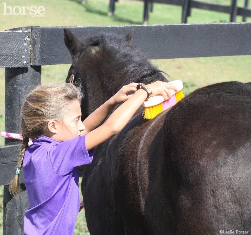 Comprar um cavalo não é tarefa para os fracos de coração. E se for para uma criança, então... Por isso, buscamos algumas dicas para você!