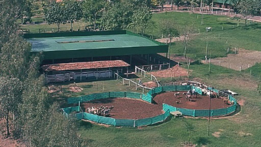 Uma modalidade relativamente nova no Brasil e que cresce a cada ano, o Ranch Sorting tem algumas especificidades que podemos destacar