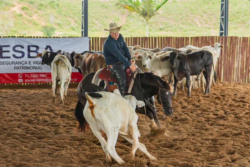 O núcleo Baiano da Associação Nacional do Cavalo de Apartação conseguiu liberação das autoridades competentes para retornar com competições