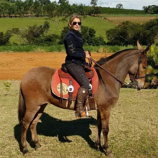 Dalva Marques fala em sua coluna que todo equitador quer um cavalo dócil, manso, tranquilo, ativo, habilidoso, ágil e responsivo aos comandos