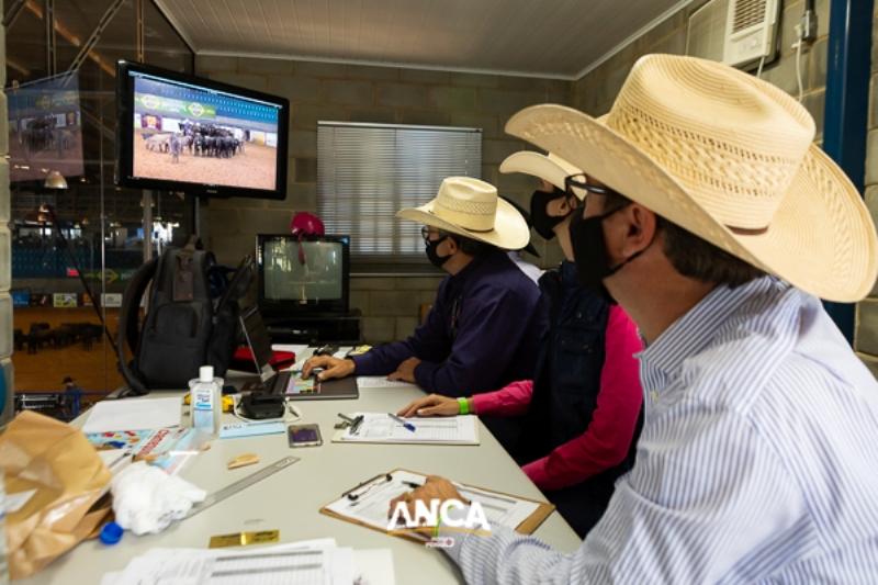 Andy Adams ministrou palestra de julgamento de Apartação ANCA/ABQM no Brasil para mais de 30 pessoas em Espírito Santo do Pinhal/SP