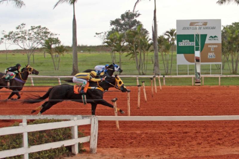 Trifeta do Haras Portofino foi o destaque da reunião 17 do Jockey Club de Sorocaba; na programação classificatória do Campeão dos Campeões