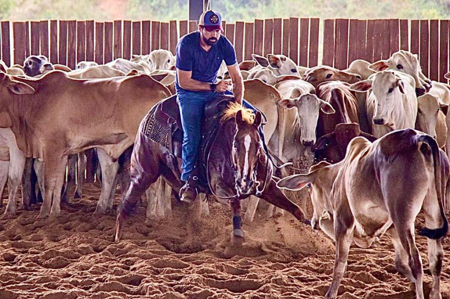 Apaixonado por cavalos, Aloísio Junior está na Apartação, cria cavalos da raça Mangalarga Marchador na Bahia não se vê longe dos seus animais
