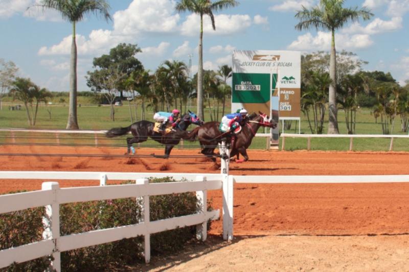 Primeira reunião do ano do Jockey de Sorocaba, com portões fechados ao público, realizou as classificatórias do Grande Prêmio Torneio Início