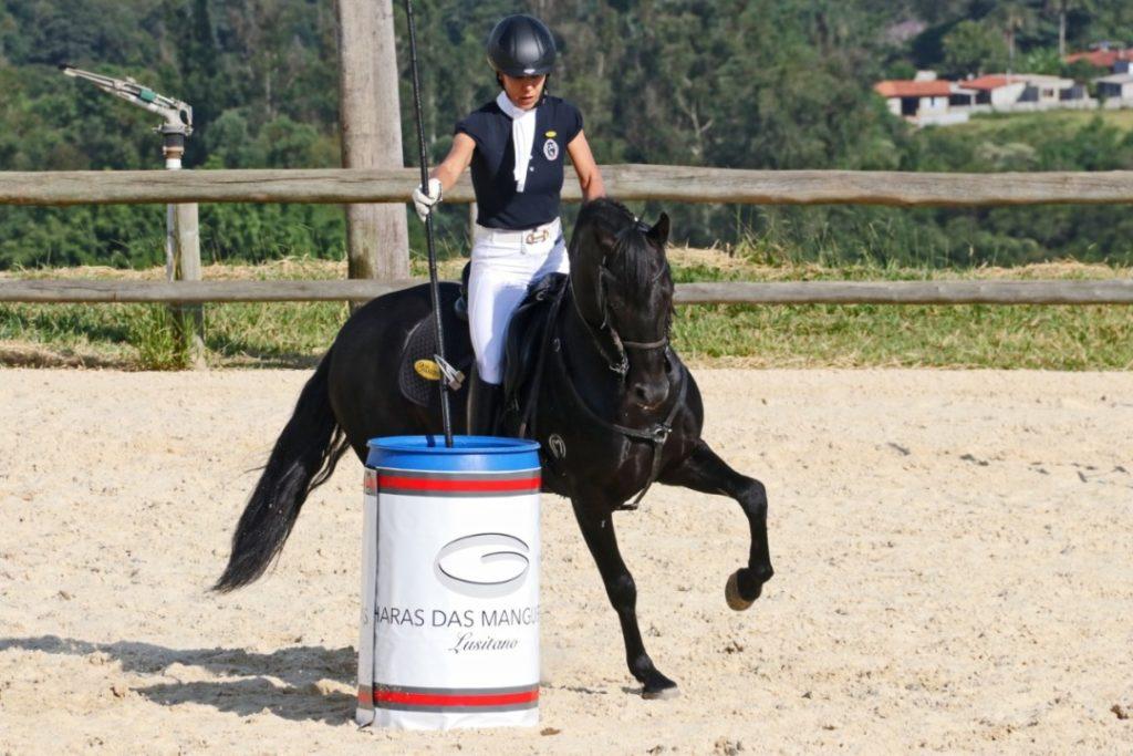 Ranking Brasil Virtual de Equitação de Trabalho tem saldo positivo