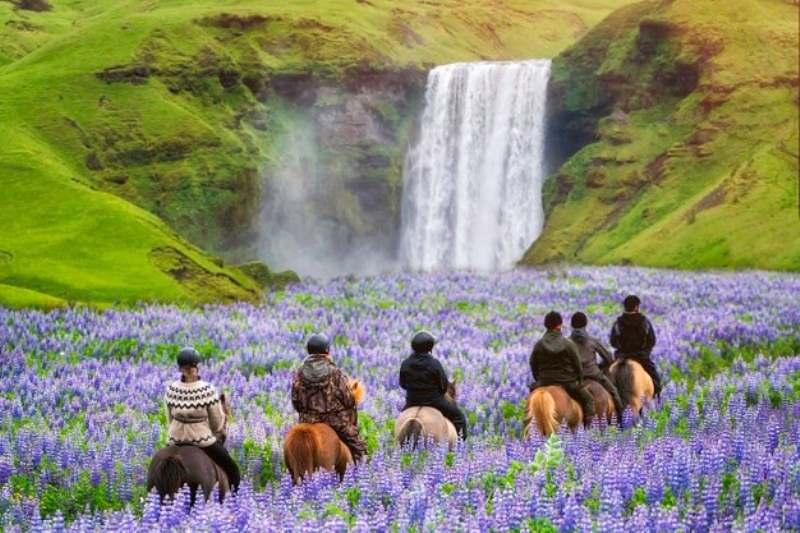 Quem está pronto para fazer trilhas e explorar novos caminhos?!? Confira dicas para que seu um passeio divertido e seguro com seu cavalo