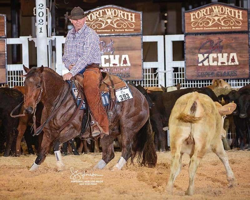 Com anos de profissão, Dirceu Grigoletto vive seu sonho de criança ao permanecer firme e forte fazendo o que mais ama, trabalhar com cavalos
