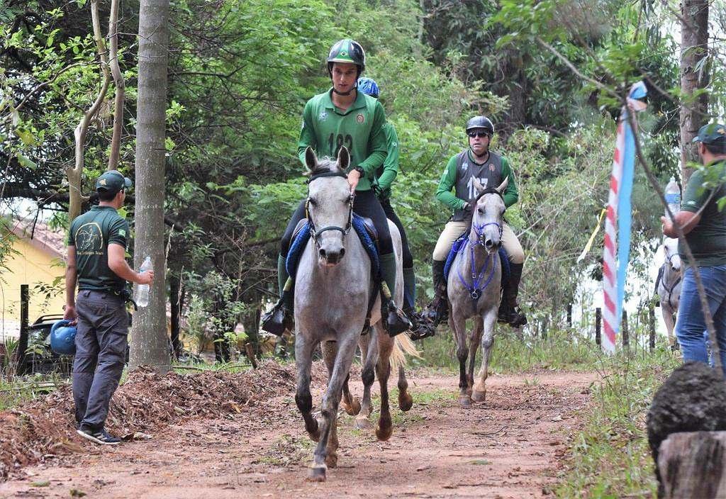 Programa do Cavalo Árabe vai ao ar nesta quarta-feira