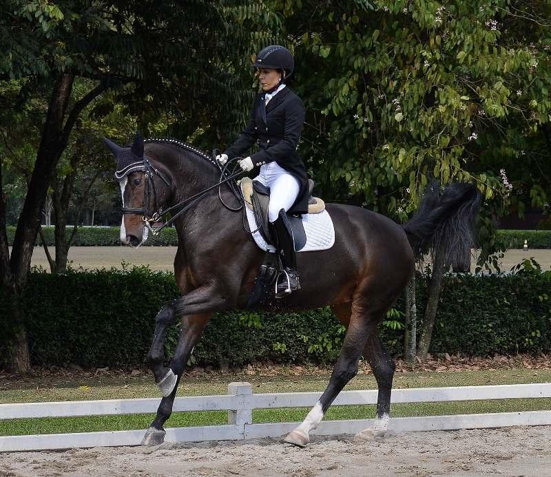 Sophia Baptista, nascida em meio aos cavalos, por conta da atividade rural da família, ela e o marido são criadores de Mangalarga Marchador
