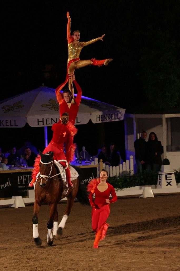 Volteio artistico: Cavaleiro 'voador', o volteador faz acrobacias sobre o lombo do cavalo enquanto ele é mantido no galope
